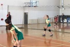 Obrenovac (44)