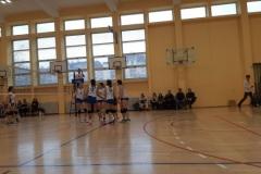 Obrenovac (47)